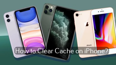 Photo of How to Clear Cache on iPhone [All Models]