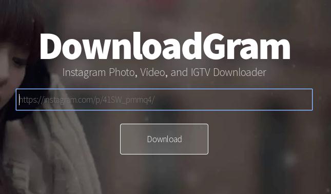 Open DownloadGram website