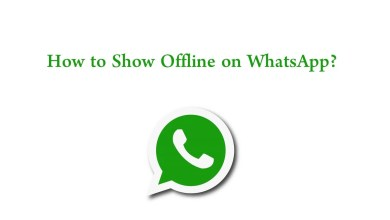 How to Show Offline on WhatsApp