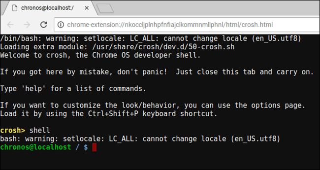 Linux on Chromebook