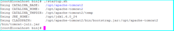 Tomcat instance 2 startup.sh output