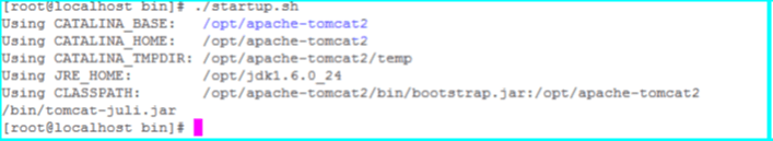 Tomcat instance 2 startup.sh output