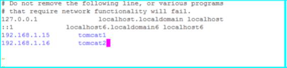 Tomcat cluster instance hosts entry in hosts file