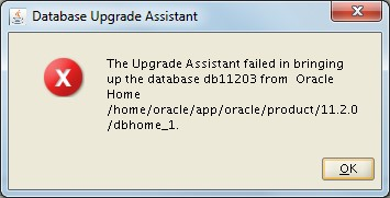 Upgrade assistant failed in bringing up the database