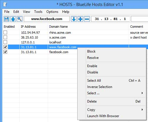 Windows Hosts File Editor and Switcher Software BlueLife Hosts Editor