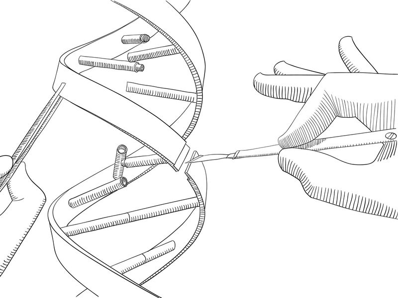 Revolutionary Super Precision Genome Editing Developed