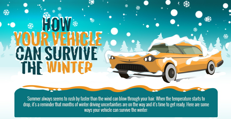 how your vehicle can survive the winter