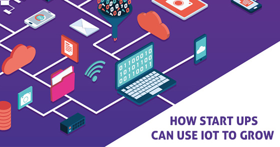 Startups and IOT