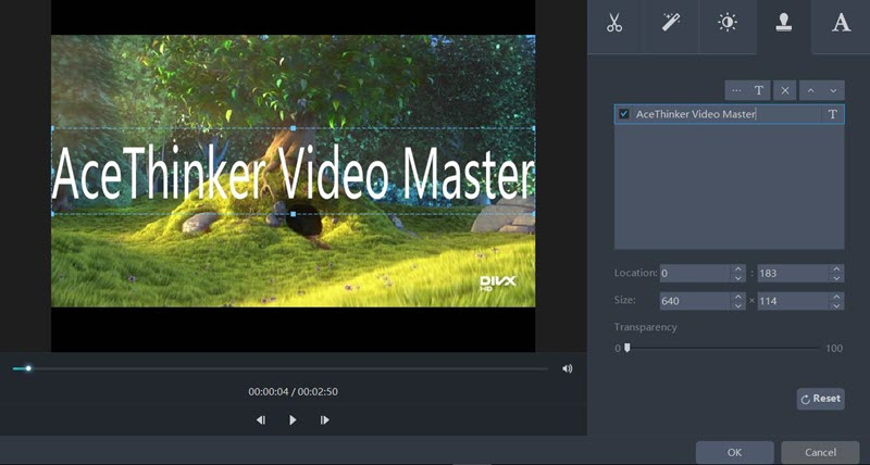 AceThinker Video Master Review Watermark