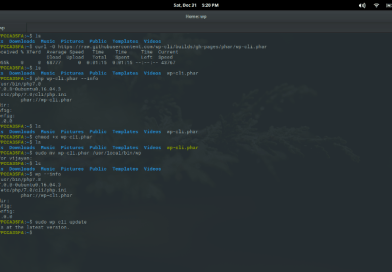How to Install WP-CLI on a linux