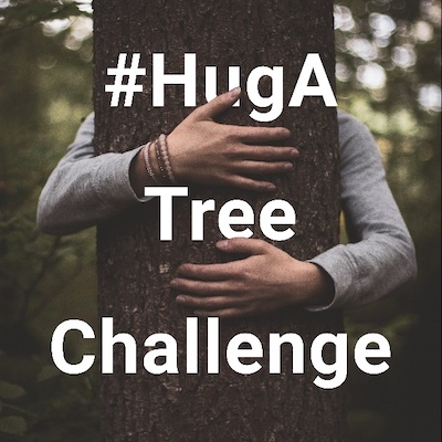 NIKIN #HugATreeChallenge – More sustainability with the help of Instagram