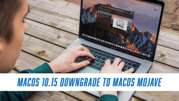 Here's how to go back to macOS Mojave.
