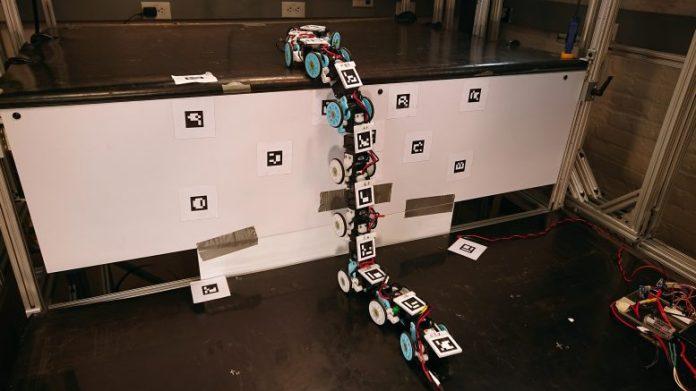 Johns Hopkins Snake Robot