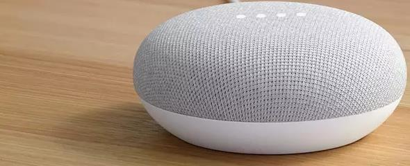 Google Home Mini (Smart Speaker)