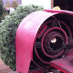 Christmas Tree Baler – Any Questions?