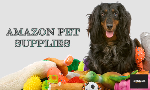 Amazon Pet Supplies: What Pet Products Sell Best on Amazon