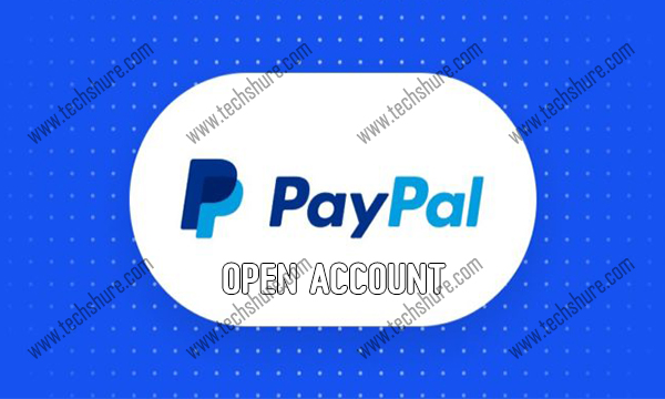 PayPal Open Account