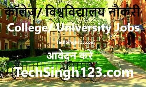 College/University Jobs कॉलेज/विश्वविद्यालय भर्तियां University Recruitment