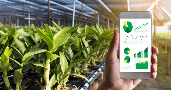 https://i0.wp.com/www.techslang.com/wp-content/uploads/2019/07/Canva-agriculture-technology-concept-man-Agronomist-Using-a-Tablet-in-an-Agriculture-Field-read-a-report-e1570188835683.jpg?resize=696%2C365&ssl=1