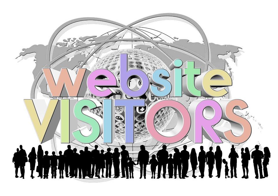 Capture Visitors Data