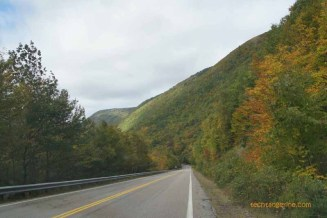 Road Through Autumn