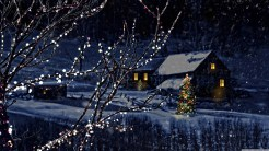 Christmas Night - wallpapers for christmas