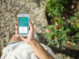 home automation garden gadget