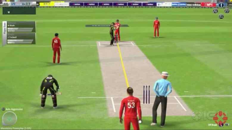 Ashes-Cricket-2013-Game