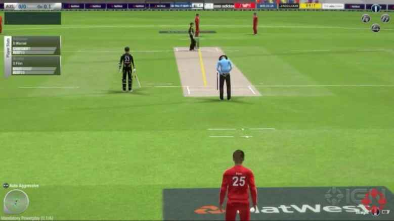 Ashes-Cricket-2013-Game (4)