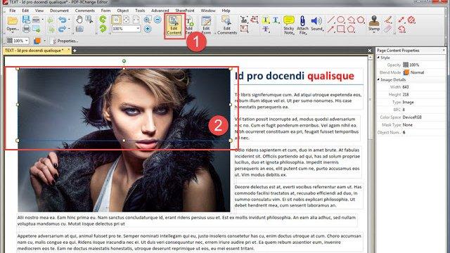 pdf-xchange.eu