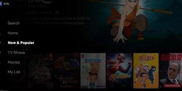 "Netflix ""New & Popular"" section"