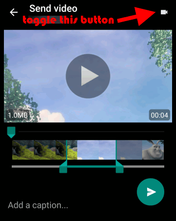 toggle-video-button