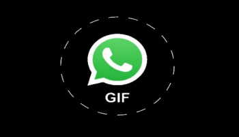 how to send videos as animated gifs on whatsapp. Black Bedroom Furniture Sets. Home Design Ideas