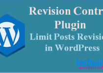 wordpress revision control plugin