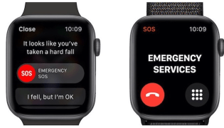 Do you have these Health features activated on your Apple Watch?