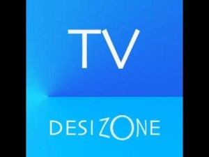 TV on Desi Zone Kodi Addon