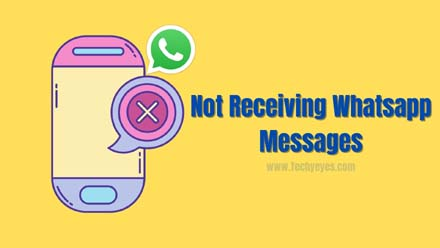 Not Receiving Whatsapp Messages