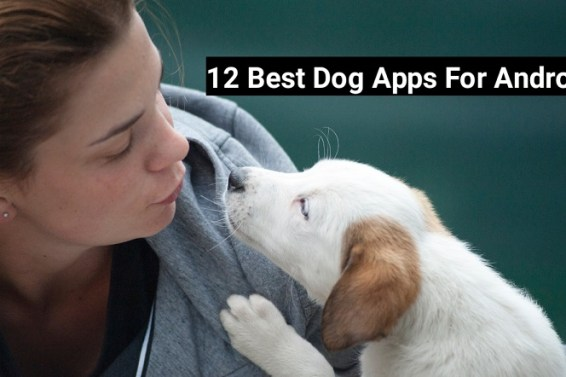 Best Dog Apps For Android 2018