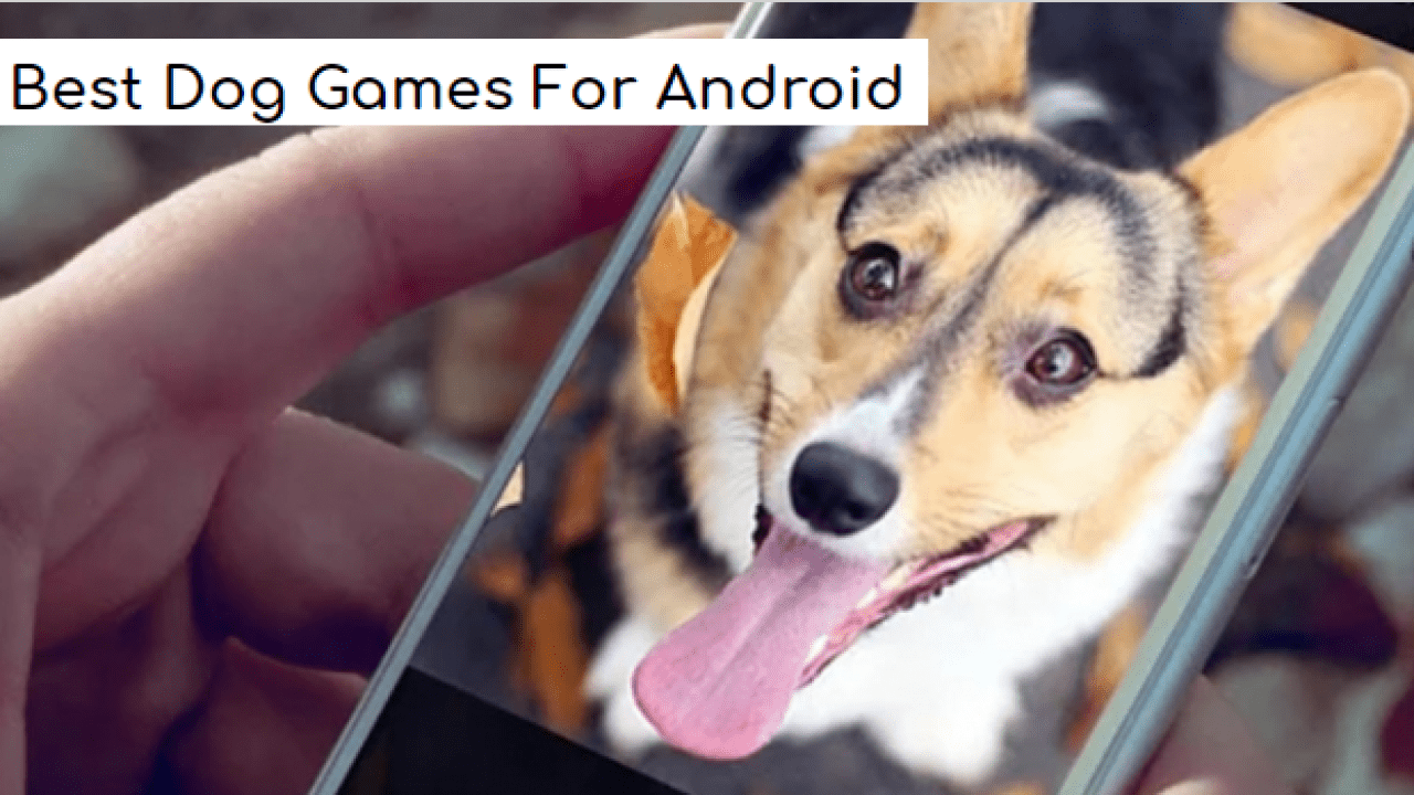 7 Best Dog Games For Android ~ Doggy Dog Games Techytab