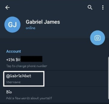 how to change username on telegram