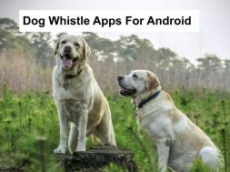 dog whistle apps for android