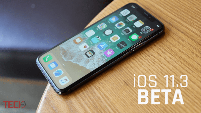 Install iOS 11.3 Beta 1 without Developer Account