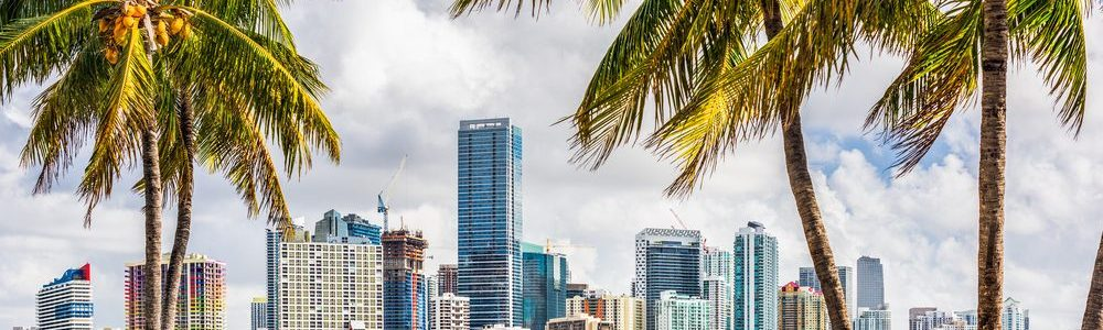Miami Translation Services Make It Easy To Reach All Of The City's Potential Customers