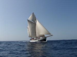 tecla on the ocean