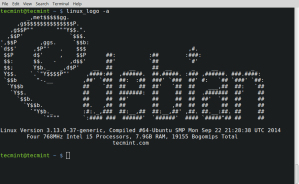 Black and White Linux Logo