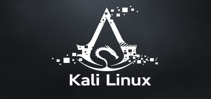 Kali Linux Fresh Installation Guide