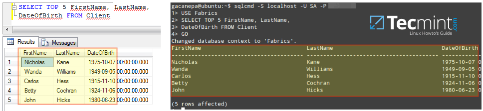 Run MSSQL Database Queries on Linux