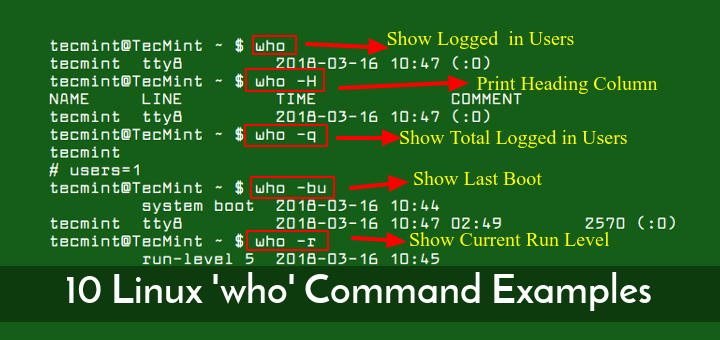 10 who command examples