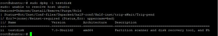Verify TestDisk on Ubuntu