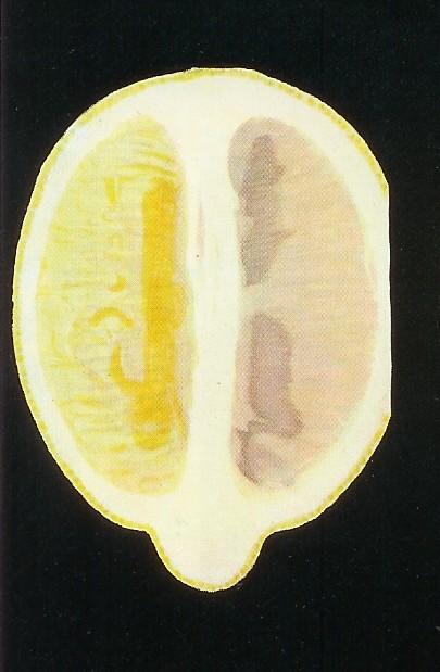 membranosis